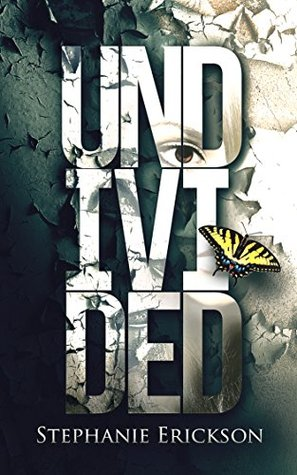 Undivided by Stephanie Erickson