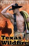 Texas Wildfire (Texas Heroes #1)
