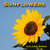 Sunflowers: Photos, Facts, ...