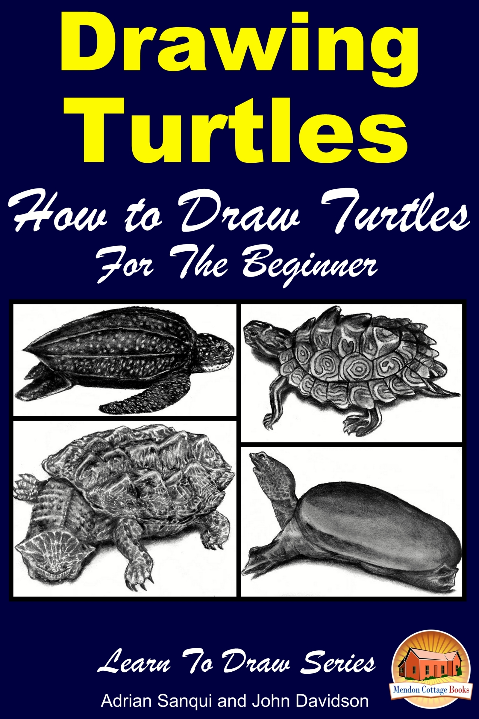 Drawing Turtles: How to Draw Turtles For the Beginner