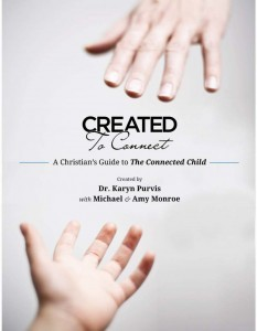 Created to Connect: A Christian's Guide to The Connected Child