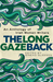 The Long Gaze Back by Sinéad Gleeson