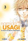 Namida Usagi - Historia de un amor no correspondido, vol. 3 by Ai Minase