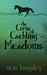 The Curse of Cackling Meadows