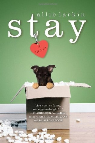 Stay by Allie Larkin