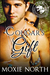 Cougar's Gift (Pacific Northwest Cougars, #3)