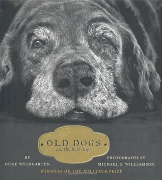 Old Dogs Are the Best Dogs by Gene Weingarten