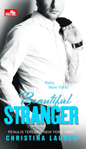 Beautiful Stranger(Beautiful Bastard 2)