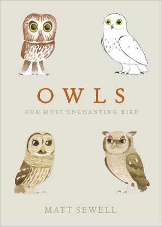 Owls: Our Most Enchanting Bird