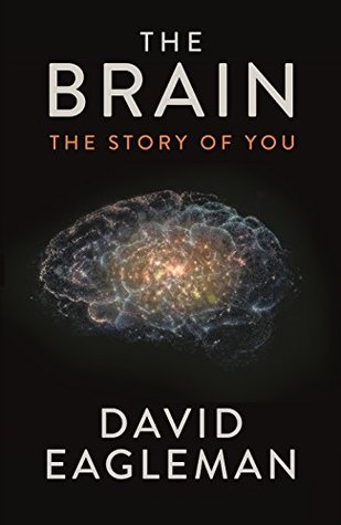 The brain david eagleman episode 1