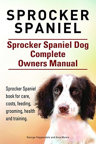 Sprocker Spaniel. Sprocker Spaniel book for care, costs, feeding, grooming, training and health. Sprocker Spaniel Dog Owners Manual.
