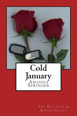 Ebook Cold January by Amanda Springer read!