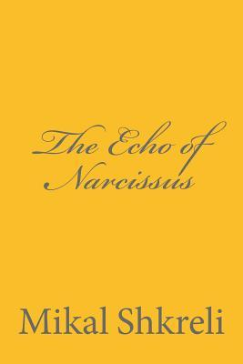 The Echo of Narcissus