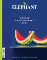 Elephant #27