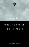 What You Wish For in Youth