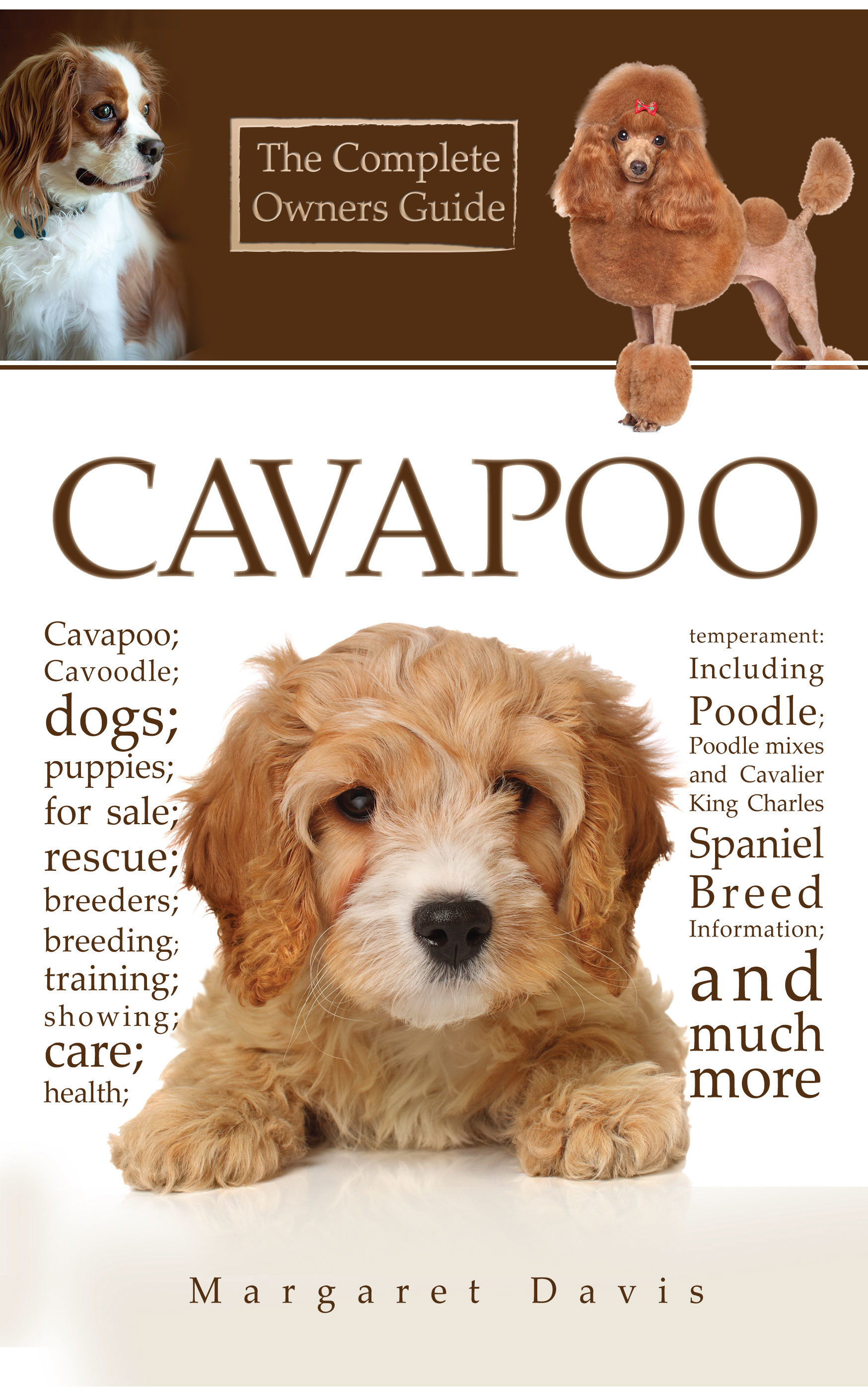 Cavapoo; Cavoodle; Dogs; Puppies; For Sale; Rescue; Breeders; Breeding; Training; Showing; Care; Health; Temperament: Including Poodle; Poodle Mixes And Cavalier King Charles Spaniel Breed Information