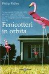 Fenicotteri in orbita by Philip Ridley