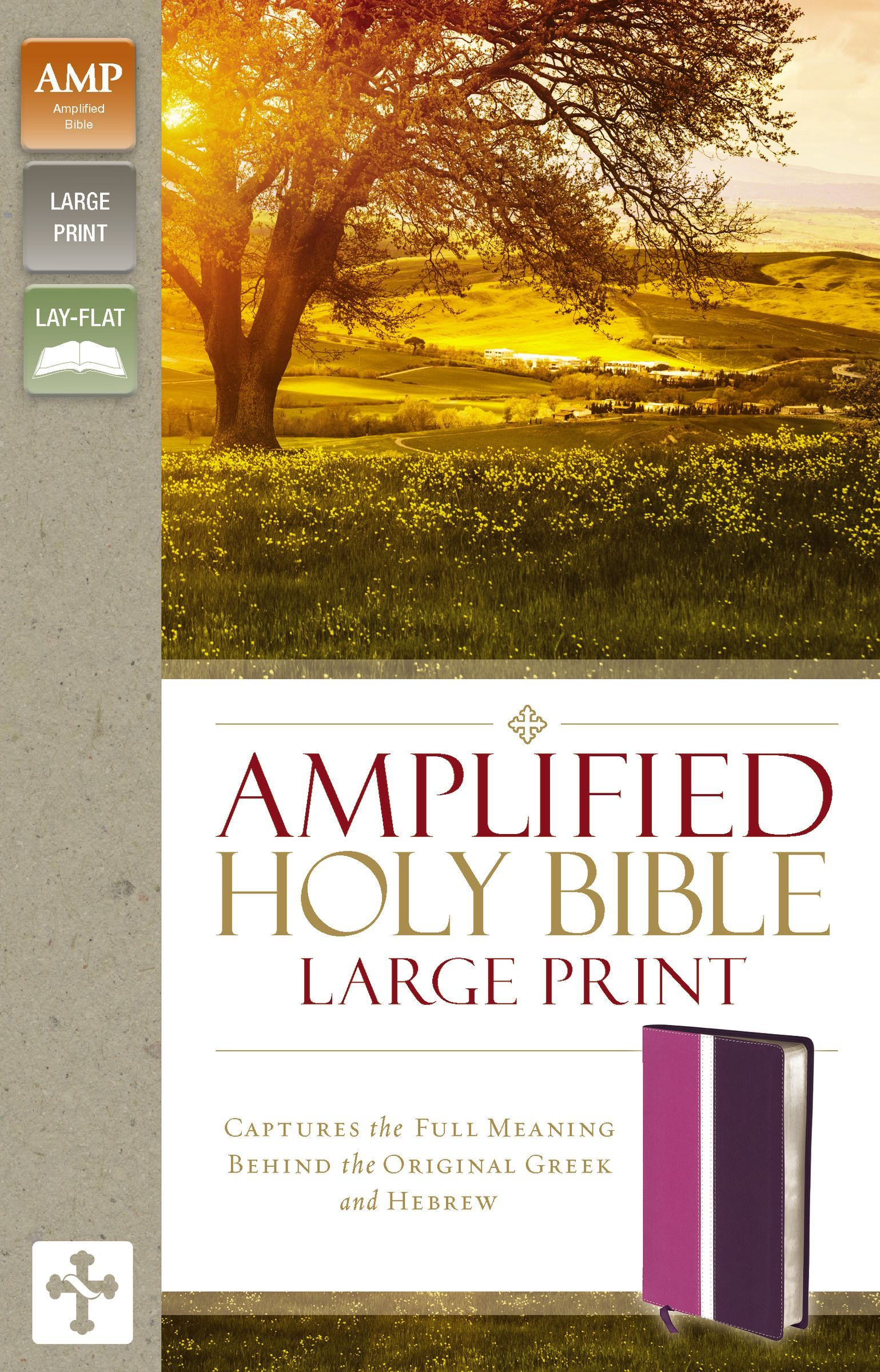 Amplified Holy Bible, Large Print, Leathersoft, Pink/Purple: Captures the Full Meaning Behind the Original Greek and Hebrew