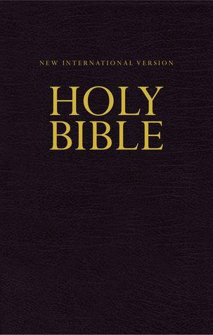 NIV, Economy Bible