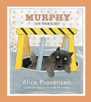 murphy-in-the-city