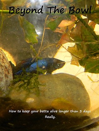Beyond the Bowl: How to keep your betta alive longer than 3 days. Really.
