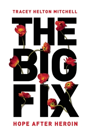 The Big Fix: Hope After Heroin par Tracey Helton Mitchell