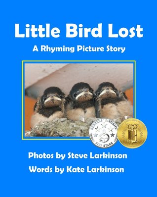 Little Bird Lost: A Rhyming Picture Story