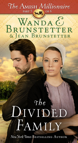 The Divided Family (The Amish Millionaire #5)