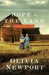 Hope in the Land (Amish Turns of Time #4)