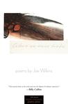 When We Were Birds: Poems
