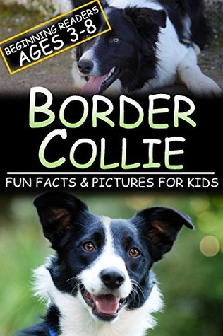 Border Collie: Fun Facts & Pictures For Kids, Beginning Readers Ages 3-8