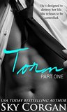 Torn (An Alpha Billionaire Romance) (The Torn Series Book 1)