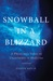 Snowball in a Blizzard: A Physician's Notes on Uncertainty in Medicine
