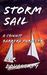 Storm Sail  (Connie Barrera Thrillers, #4)
