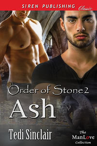 Ash (Order of Stone, #2)