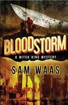 Blood Storm (Mitch King Mystery #2)