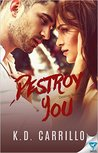 Destroy You (Destroy #3)