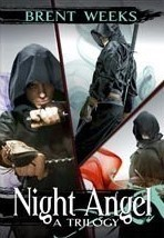 Image result for night angel