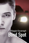 Blind Spot (The Stonebridge Mysteries, #3)