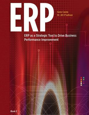 Erp as a Strategic Tool to Drive Business Performance Improvement