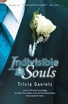 Indivisible Souls (Bound4Ireland, #3)