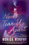 Never Tear Us Apart (Never, #1)