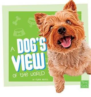 a-dog-s-view-of-the-world