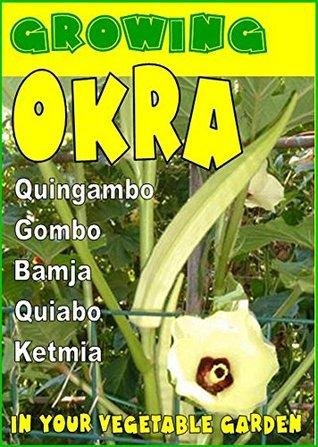 Growing Okra in your vegetable garden: Also called Gombo, Bamja, Quiabo, Ketmia, Quingambo