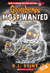 The Haunter (Goosebumps Most Wanted Special Edition, #4)