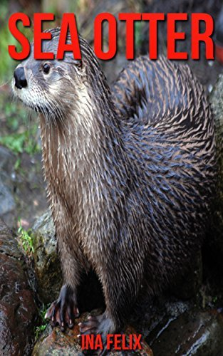 Sea Otter: Children Book of Fun Facts & Amazing Photos on Animals in Nature - A Wonderful Sea Otter Book for Kids aged 3-7