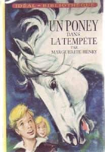 Un Poney dans la Tempête
