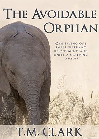 The Avoidable Orphan by T.M. Clark