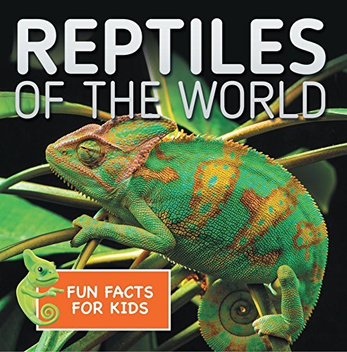 Reptiles of the World Fun Facts for Kids: Reptile Books for Children - Herpetology (Children's Zoology Books)