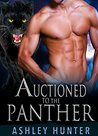 Auctioned To The Panther (Wild Shifters, #2)